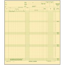 "Safeguard Compatible Payroll Ledger Cards, 9-1/2"" W x 11"" H, 15/Pkg"