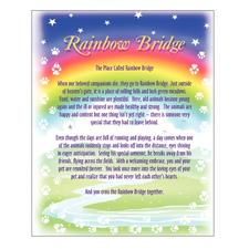 "Starlight Sympathy Card Assortment Pack, 4-1/4"" W x 5-1/2"" H, 45/Pkg"