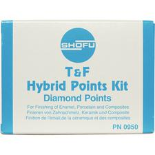 T & F Hybrid Points Kit