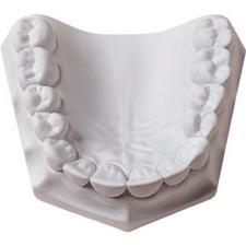 Plâtre orthodontique – super blanc, 33 lb